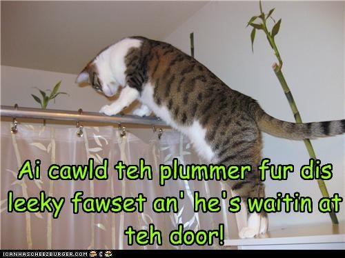Ai cawld teh plummer fur dis leeky fawset an' he's waitin at teh door!