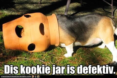 beagle,cookies,cookie jar,defective,FAIL,head,holes,jar,put,stuck