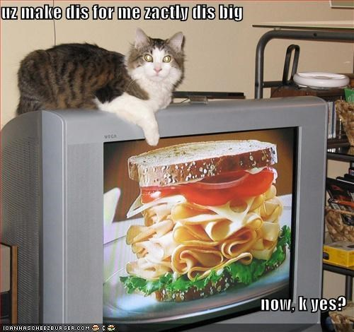 Cheezburger Image 4458704640