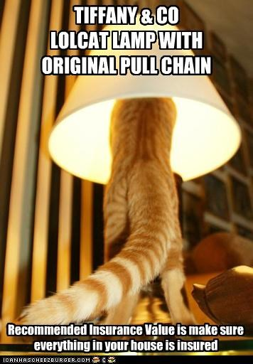bad idea,brand,caption,captioned,cat,chain,insurance,lamp,lampshade,original,pull,recommended,shade,tabby,value,warning