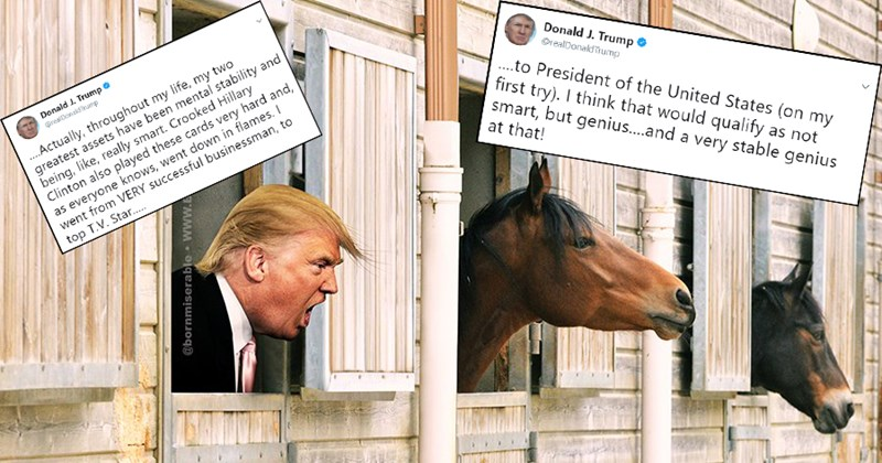 Twitter reactions to donald trump stable genius tweet.