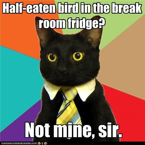 bird,break room,brown bag,Business Cat,fridge,lunch