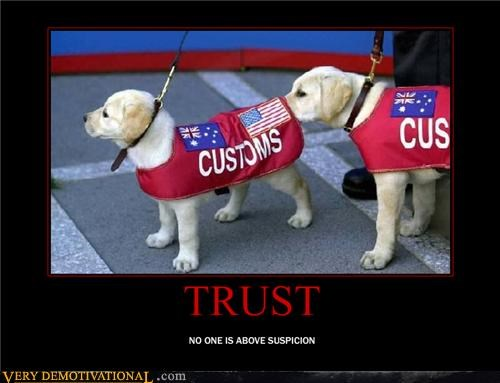 butt sniffing,dogs,trust,trust issues