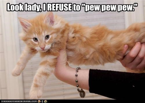 caption,captioned,cat,firing,gun,Hall of Fame,kitten,laser,pew,pew pew pew,refusal,refuse,refusing,tabby