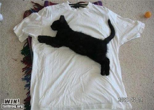 animals Cats clothing logo - 4461823232