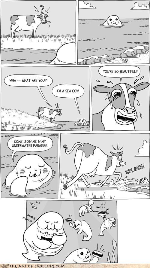 cow hamburger manatee sea seacow troll - 4462282496