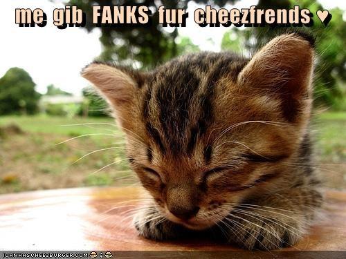 Cheezburger Image 4463913984