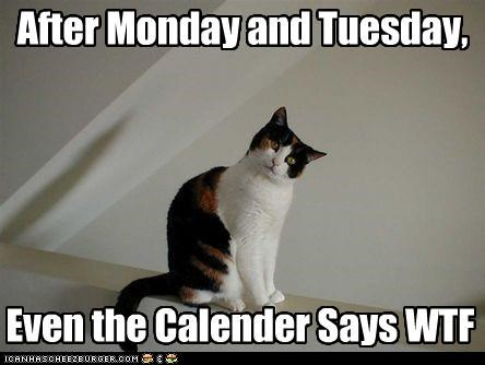 After Monday and Tuesday, Even the Calender Says WTF