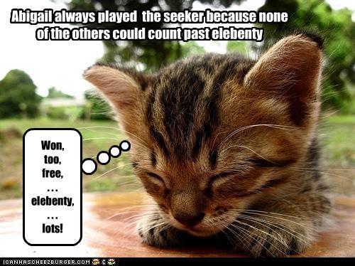 caption captioned cat counting elebenty hide and seeking hide n seek kitten numbers - 4464644096