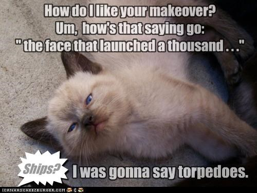 caption captioned cat comment face honest kitten launched makeover misquote opinion quote ships thousand torpedoes word choice - 4465162752