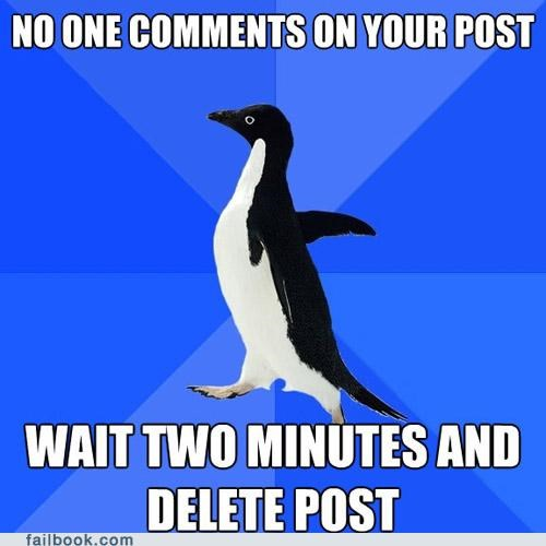 comments post socially awkward penguin - 4465716992