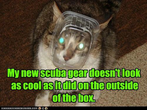 My new scuba gear doesn't look as cool as it did on the outside of the box.
