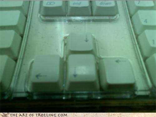arrow keys,computers,IRL,keyboard