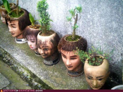 creepy dont-want-to-see-the-rest-of-their-house heads mannequin plants pottery wtf
