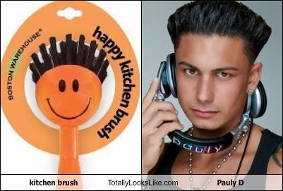 brush,jersey shore,kitchen brush,orange,pauly d,reality star