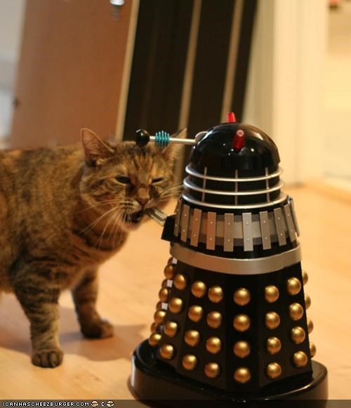 bite,cyoot kitteh of teh day,dalek,doctor who,nom,robot,toy
