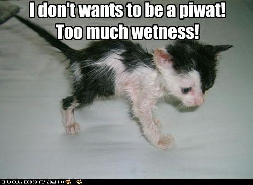 I don't wants to be a piwat! Too much wetness!