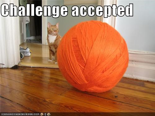 accepted ball caption captioned cat challenge Challenge Accepted giant meme yarn - 4468236800