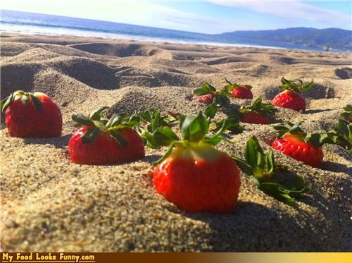 beach oasis sand strawberries waste - 4468389632