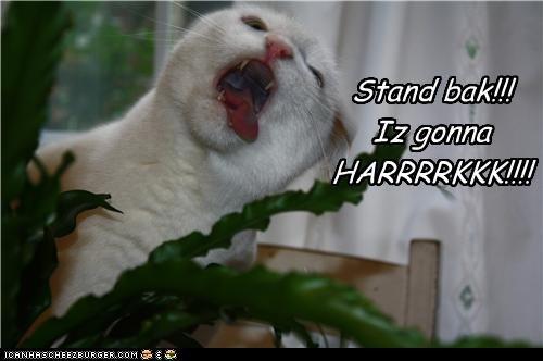 Stand bak!!! Iz gonna HARRRRKKK!!!!