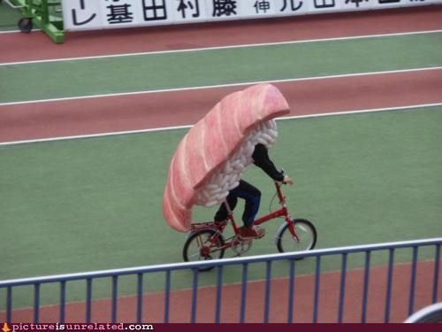 bikes,costume,sushi,transportation,wtf
