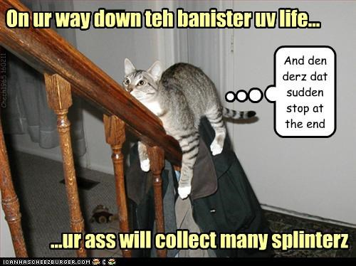 Banister,butt,caption,captioned,cat,collect,down,life,life lesson,sliding,splinters,stairs,warning,way,worried