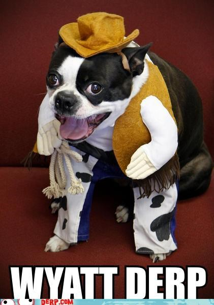 costume cowboy critters dogs dress up wyatt - 4469544704