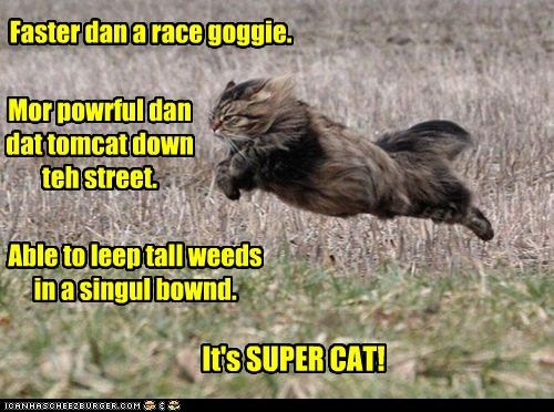 able better caption captioned cat faster flying hero intro leap more parody powerful running Super superhero superman tall Weeds