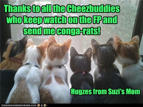 Thanks to all the Cheezbuddies who keep watch on the FP and send me conga-rats!