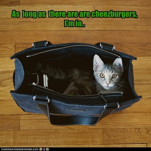 Cheezburger Image 4470996224