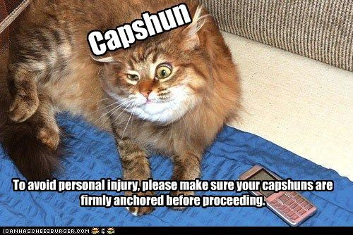 Capshun To avoid personal injury, please make sure your capshuns are firmly anchored before proceeding.