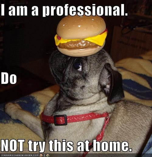 advice,balance,balancing,cheezburger,do not,dont,Hall of Fame,home,professional,pug,trick,try