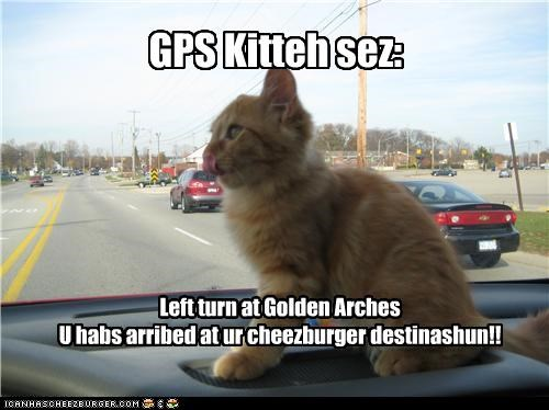GPS Kitteh sez: Left turn at Golden Arches U habs arribed at ur cheezburger destinashun!!