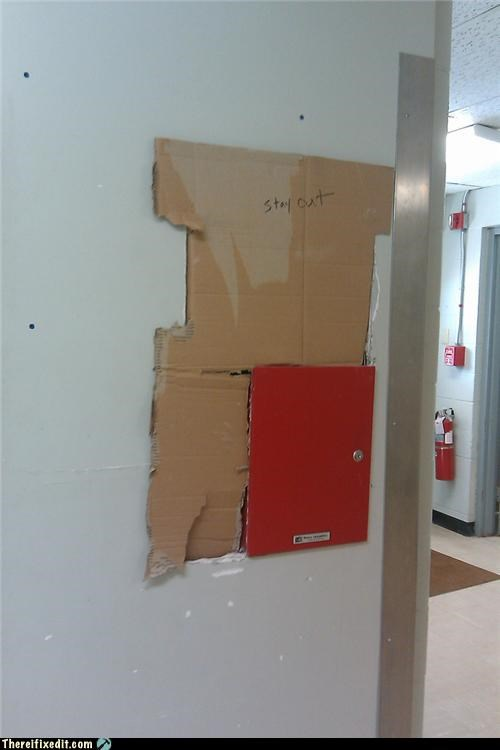 cardboard drywall Professional At Work
