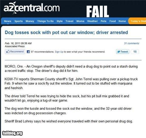 animals,busted,dogs,driving,drugs,failboat,pets,police,Probably bad News