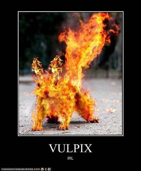 VULPIX IRL