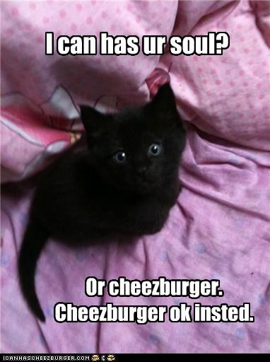 I can has ur soul? Or cheezburger. Cheezburger ok insted.