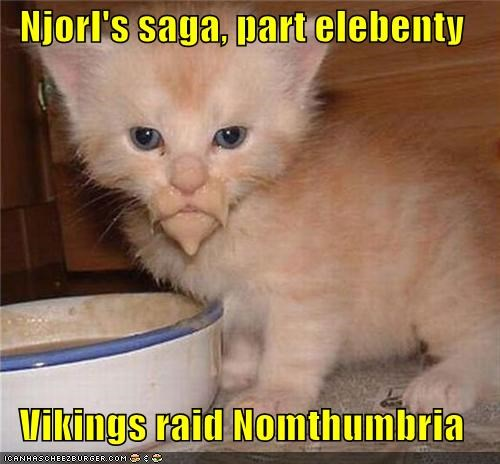 beard caption captioned cat conquering elebenty kitten lolwut noms part raid saga tabby vikings wtf - 4473815808
