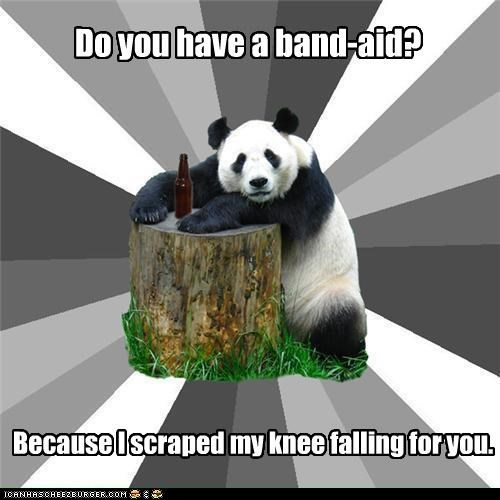 animemes,Bad Pickup Line Panda,bandaid,falling for you,knee,panda,pickup line