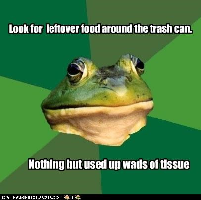 Look for leftover food around the trash can. Nothing but used up wads of tissue