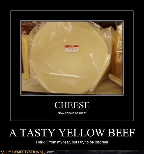 Cheezburger Image 4474313216