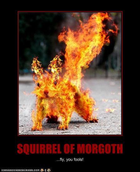 SQUIRREL OF MORGOTH ...fly, you fools!