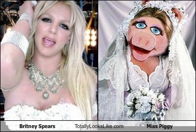 britney spears,Hold It Against Me,miss piggy,muppets,music video,singer,the muppets,wedding dress