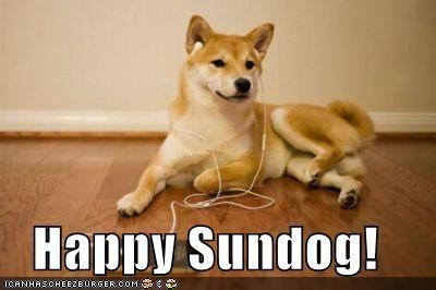 happy happy sundog headphones ipod listening Music shiba inu Sundog
