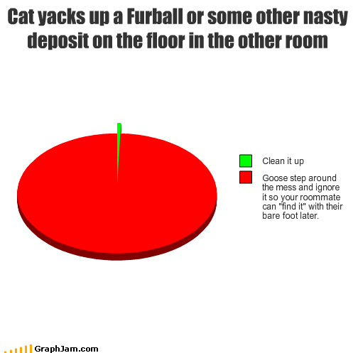 pie charts graphs roommates Cats funny - 4476013568