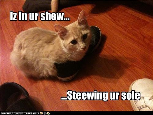 Iz in ur shew... ...Steewing ur sole