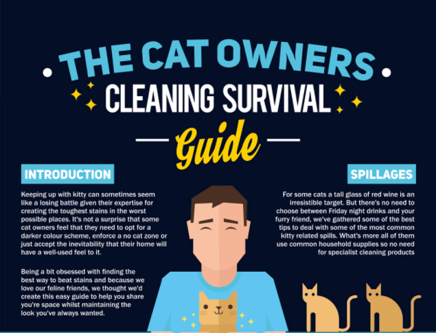 guides infographic Cats useful - 4476677