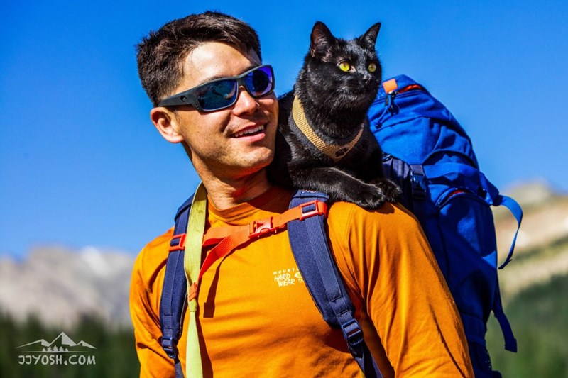 adventure trip Cats backpack - 4477445