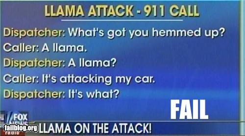 Fox News Fail 2/19/2011 at 3AM. Apparantly in between union protests and revolution in the Middle East we hear what we all need to know about. The impending threat of llama attack.