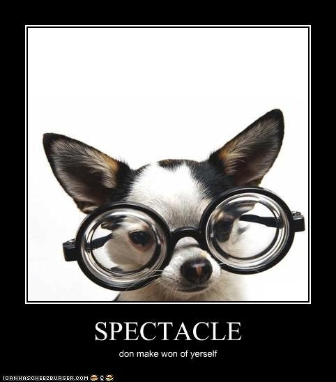 SPECTACLE don make won of yerself
